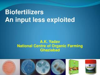 Biofertilizers An input less exploited