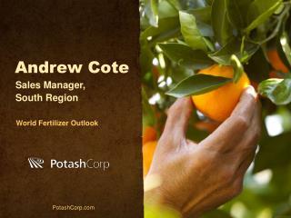 Andrew Cote