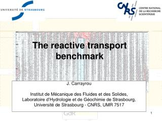 The reactive transport benchmark