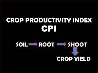 CROP PRODUCTIVITY INDEX CPI SOIL ROOT SHOOT