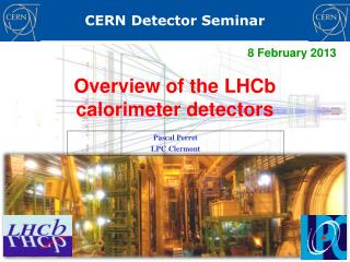 Overview of the  LHCb  calorimeter detectors