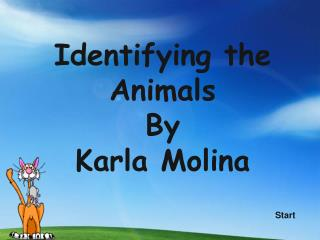 Identifying the Animals By Karla Molina