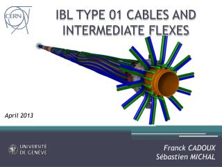 IBL TYPE 01 CABLES AND INTERMEDIATE FLEXES