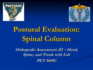 Postural Evaluation:  Spinal Column