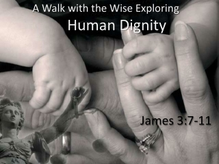 A Walk with the Wise Exploring Human Dignity