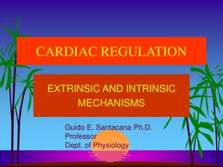 CARDIAC REGULATION