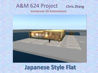 A&M 624 Project       Chris Zhang    Immersive 3D Environment