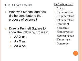 Genetics Terms and Punnett Square Notes
