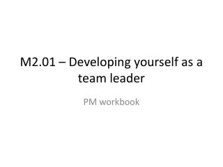 M2.01 – Developing yourself as a team leader