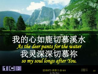 我的心如鹿切慕溪水 As the deer pants for the water 我灵深深切慕祢 so my soul longs after You.