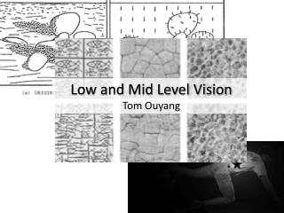 Low and Mid Level Vision Tom Ouyang