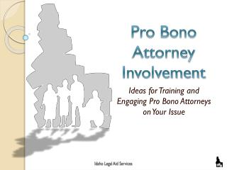 Pro Bono Attorney Involvement