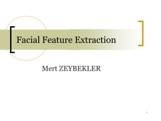 Facial Feature Extraction