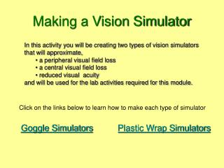 Making a Vision Simulator