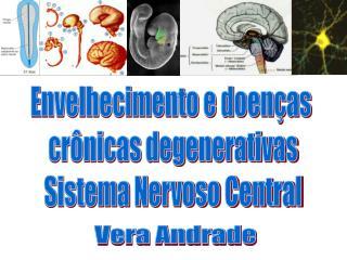 Envelhecimento e doenças  crônicas degenerativas Sistema Nervoso Central