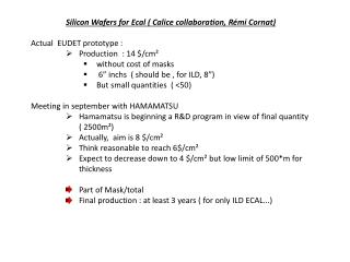 Silicon Wafers for  Ecal  (  Calice  collaboration,  Rémi Cornat ) Actual  EUDET prototype :