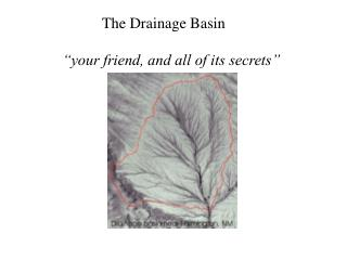 "The Drainage Basin     ""your friend, and all of its secrets"""