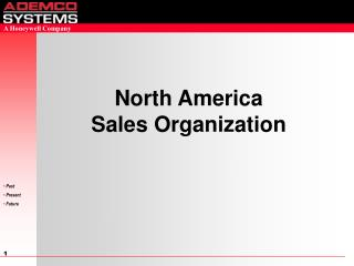 North America                           Sales Organization