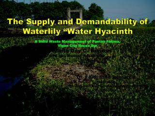 A Solid Waste Management of P antay Fatima, Vigan City Ilocos Sur By Maria Day C. Benzon