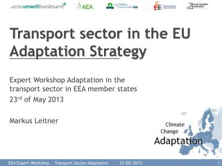 Transport  sector  in  the  EU Adaptation  Strategy