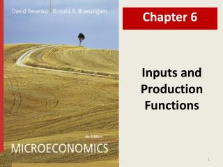 Inputs and Production Functions