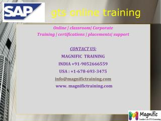 sap gts online training USA UK and Canada