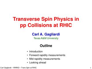 Transverse Spin Physics in pp Collisions at RHIC