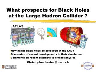 What prospects for Black Holes at the Large Hadron Collider ?