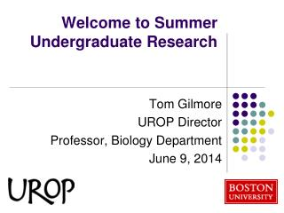 Welcome to Summer Undergraduate Research