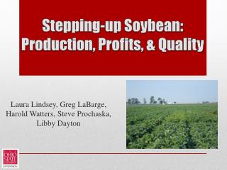 Stepping-up Soybean: Production, Profits, & Quality