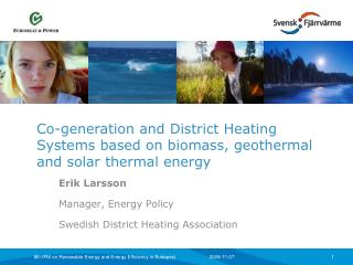 Co-generation and District Heating Systems based on biomass, geothermal and solar thermal energy