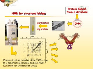 NMR for structural biology