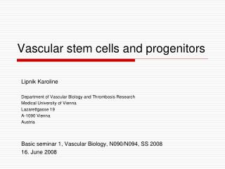 Vascular stem cells and progenitors