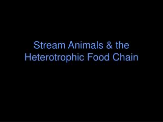 Stream Animals & the Heterotrophic Food Chain