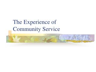 The Experience of Community Service