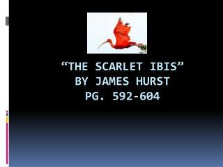 """the Scarlet Ibis"" By James Hurst pg. 592-604"