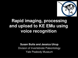 Rapid imaging, processing  and upload to KE EMu using voice recognition