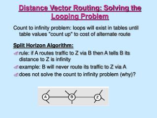 Distance Vector Routing: Solving the Looping Problem
