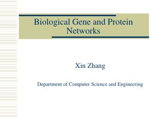Biological Gene and Protein Networks