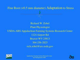 Fine Root (<0.5 mm diameter) Adaptation to Stress