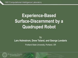 Experience-Based Surface-Discernment by a Quadruped Robot