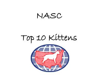 NASC Top 10 Kittens