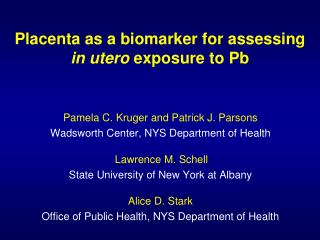 Placenta as a biomarker for assessing   in utero  exposure to Pb