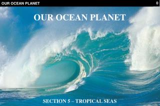 OUR OCEAN PLANET