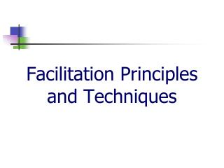 Facilitation Principles and Techniques