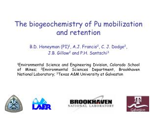 The biogeochemistry of Pu mobilization and retention