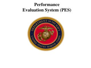 Performance  Evaluation System (PES)