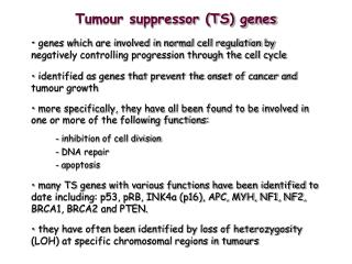 Tumour suppressor (TS) genes