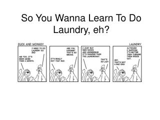 So You Wanna Learn To Do Laundry, eh?
