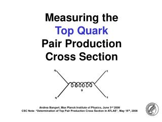 Measuring the  Top Quark Pair Production  Cross Section